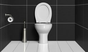 caractéristiques des wc à poser
