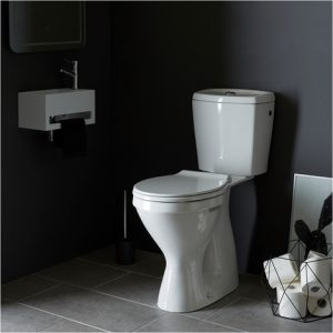 pack wc sur lev sortie vertical les toilettes. Black Bedroom Furniture Sets. Home Design Ideas